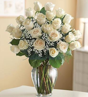 "Ultimate Eleganceâ""¢ Premium Long Stem White Roses"