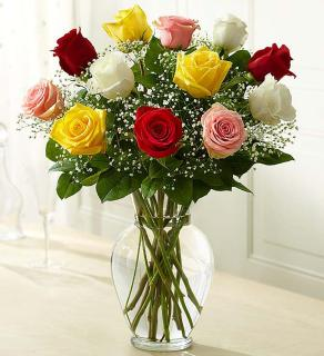 A Valentine\'s Day Assorted Our Color Choice Roses
